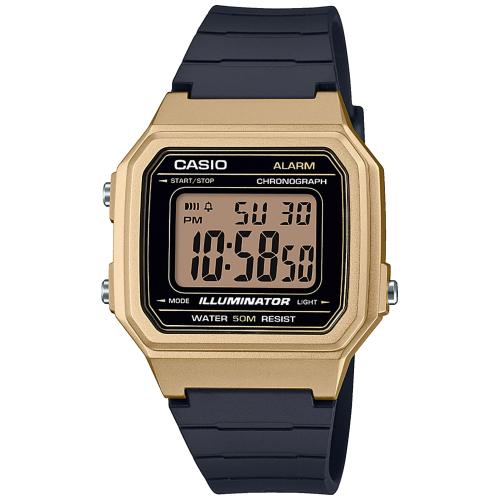 Montre Casio W-217HM-9AVEF
